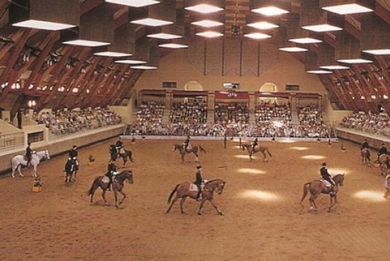 Cadre Noir, Escuela Nacional de equitación