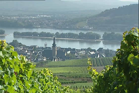 Rüdesheim y el rin