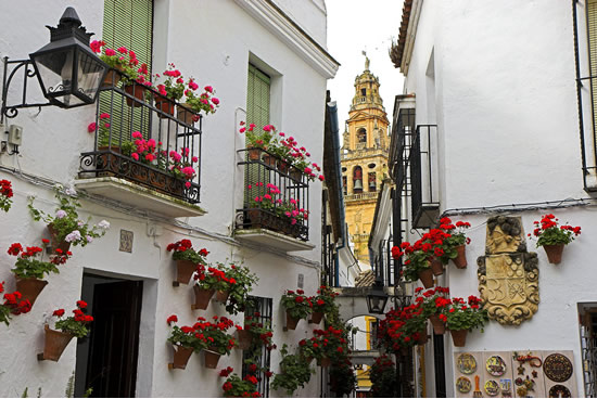 Córdoba, Calleja de Las Flores