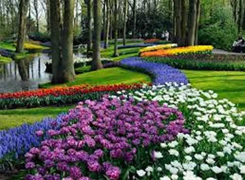 Keukenhof, parque floral