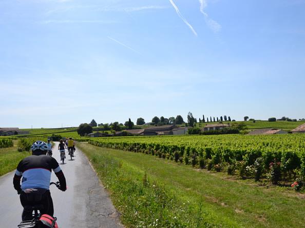 St. Emilion, Aquitania, recorridos entre viñedos en bicicleta