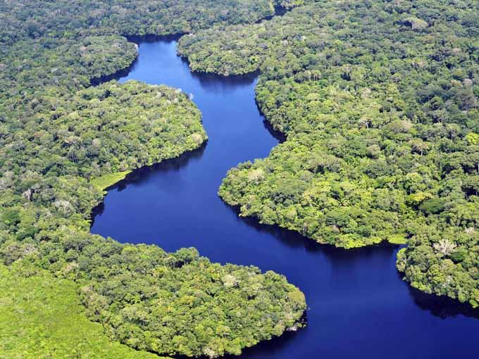 Amazonas (Brasil...)