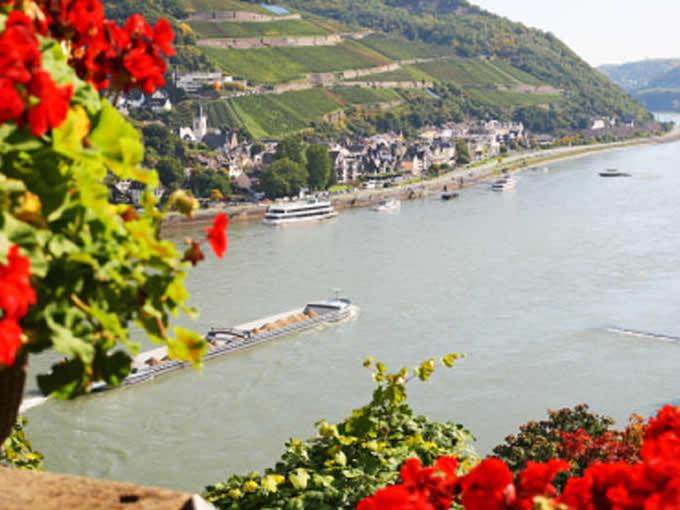 Rin (Alemania..)